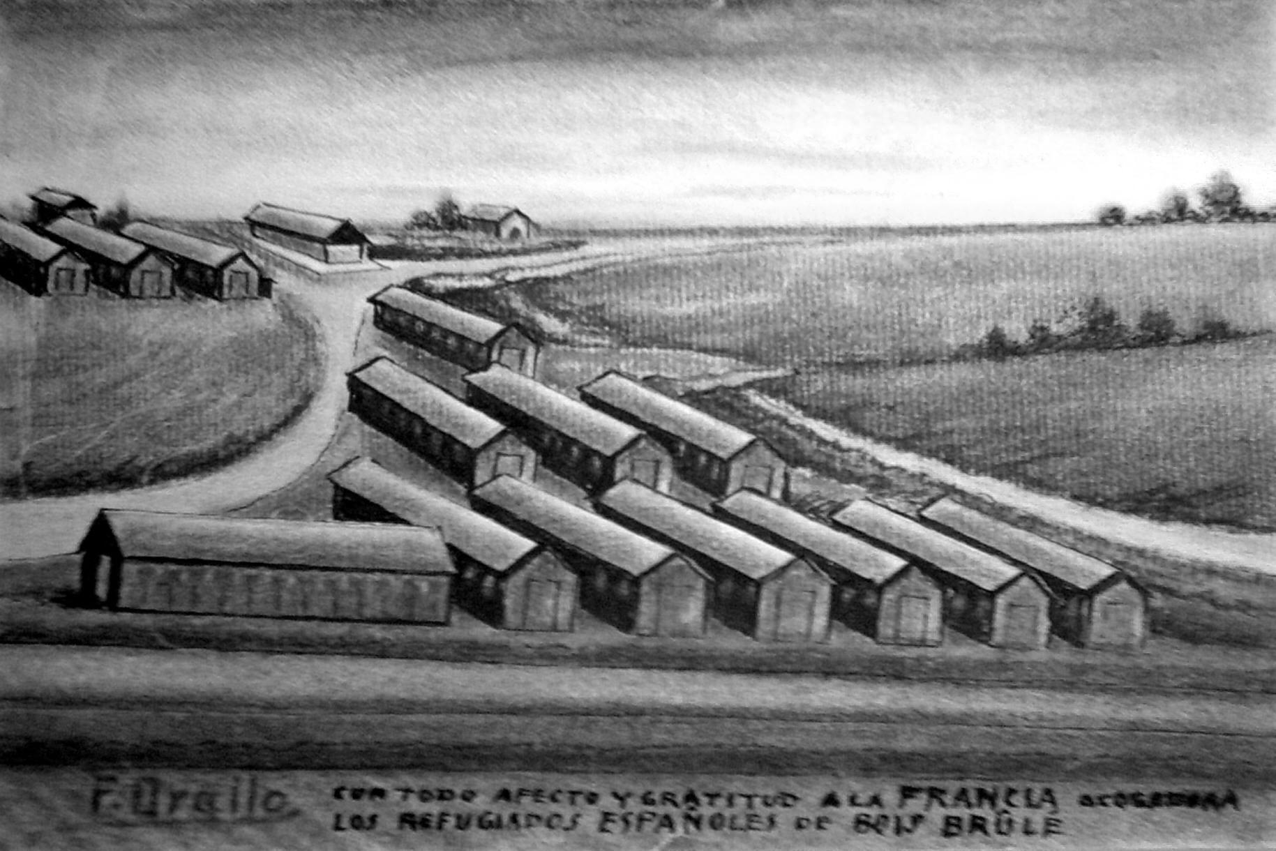 Camp-de-Lamotte-Beuvron-cote-520-1